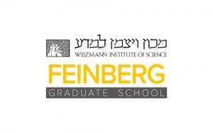 מיתוג עסקי - לוגו - מכון ויצמן למדע - מכללת פיינברג